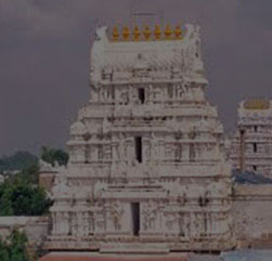 One Day Tirupati Tour Packages